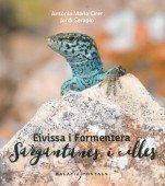 Eivissa i Formentera - Sargantanes i Illes