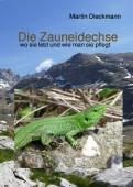 Die Zauneidechse – wo sie lebt und wie man sie pflegt
