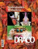 Heft 59 Spektakuläre Wirbellose
