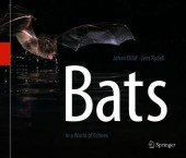 Bats - In a World of Echoes
