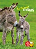 Entdecke die Esel