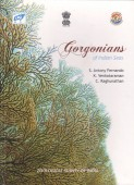 Gorgonians of Indian Seas