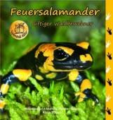 Feuersalamander – Giftiger Waldbewohner