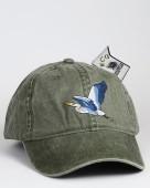 Great Blue Heron – Kanadareiher