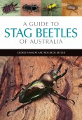 A Guide to Stag Betles of Australia