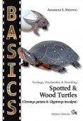 Spotted & Wood Turtles (Clemmys guttata & Glyptemys insculpta)