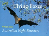 Flying-Foxes – Australian Night Foresters