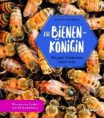 Die Bienenkönigin – Was jeder Hobbyimker wissen muss
