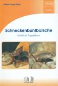 Schneckenbuntbarsche - Kobolde des Tanganjikasees