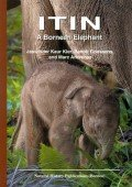 Itin - A Bornean Elephant