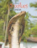 Common Snakes of India