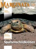 Heft 37 Spaltenschildkröten