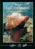 Recent Fasciolariidae