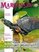 Heft 38 Schildkrötenhybriden