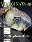 Heft 39 Großkopfschildkröten
