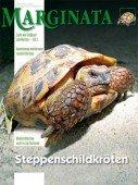 Heft 41 Steppenschildkröten