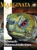 Heft 42 Schmuck-Dosenschildkröten