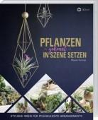 Pflanzen gekonnt in Szene setzen – Stylishe Ideen für pflegeleichte Arrangements