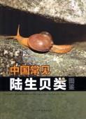 lllustrated Handbook of Common Terrestrial Mollusks in China