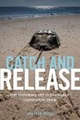 Catch and Release – The Enduring yet vulnerable Horseshoe Crab