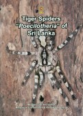 "Tiger Spiders ""Poecilotheria"" of Sri Lanka"