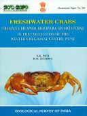 Freshwater Crabs in the Collection of the Western Regional Centre, Pune
