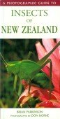 Insects of New Zealand - A Photographic Guide