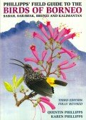 Field Guide to the Birds of Borneo, Sabah, Sarawak, Brunei and Kalimantan