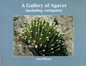 A Gallery of Agaves (Including variegates)