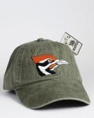 Pileated Woodpecker – Helmspecht