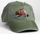 Porcupine – Stachelschwein