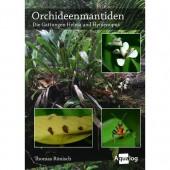 Orchideenmantiden - die Gattungen Helvia und Hymenopus
