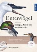 Entenvögel – Europa, Asien und Nordamerika