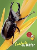 Entdecke die Käfer - Mit großem Käferquiz