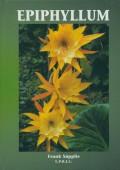 Epiphyllum 1