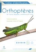 Orthoptères de France, Belgique, Luxembourg & Suisse – Toutes les espèces. Sauterelles, Grillons & Criquets