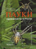Spiders of European Russia – A Pocket Guide