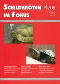 Heft 4/2008
