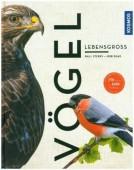 Vögel lebensgroß – 250 Arten in 1000 Farbfotos