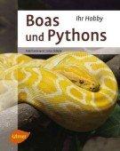 Boas & Pythons