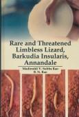 Rare and Threatened Limbless Lizard, Barkudia Insularis ANNANDALE
