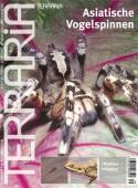 9 Asiatische Vogelspinnen