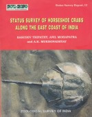 Status Survey of Horseshoe Crabs along the East Coast of India