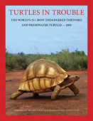 Turtles in Trouble – The World's 25+ most endangered Tortoises and Freshwater Turtles 2018
