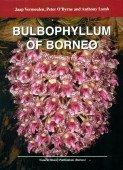 Bulbophyllum of Borneo