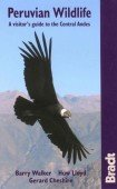Peruvian Wildlife – A Visitor's Guide to the Central Andes