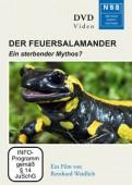 Der Feuersalamander - Ein sterbender Mythos?