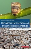 Die Meeresschnecken und -muscheln Deutschlands – Finden – Erkennen – Bestimmen