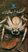 The Field Guide to Spiders and Scorpions of Iran