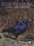 Bowerbirds Nature •Art • History